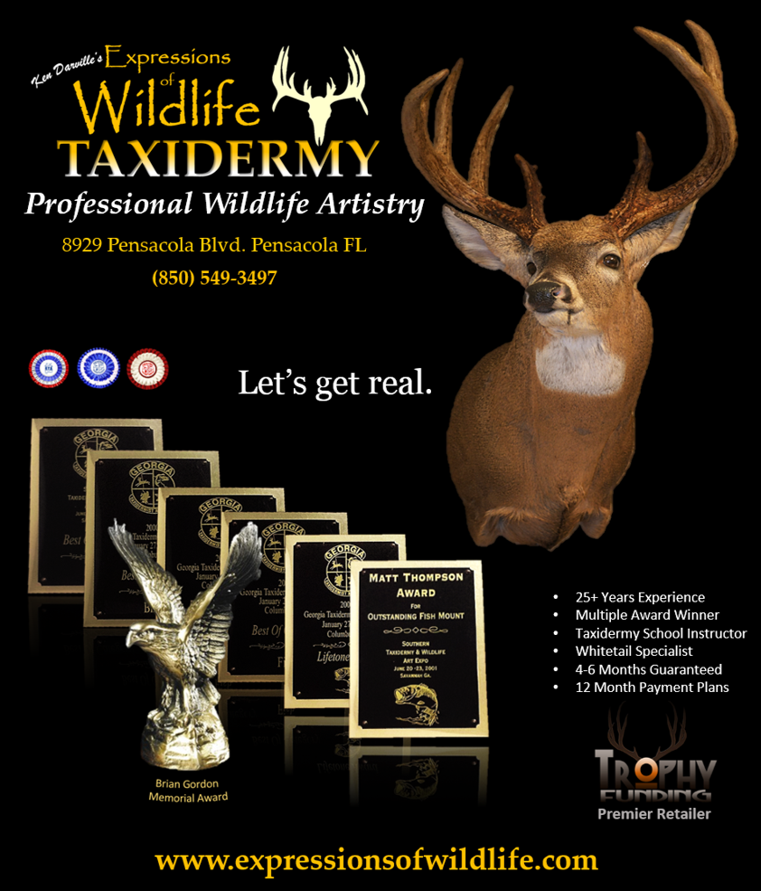 Taxidermy: Why Does It Cost So Much? | Citizen Sportsman